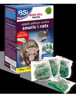 6 pi ges colle pour souris une invasion de souris rats probl mes actuels sos huis en. Black Bedroom Furniture Sets. Home Design Ideas